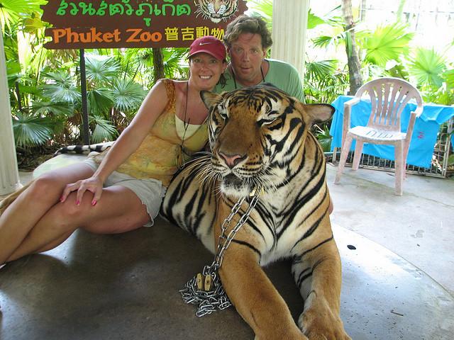 http://lepimanresort.com/wp-content/uploads/2016/03/phuket-zoo-6.jpg